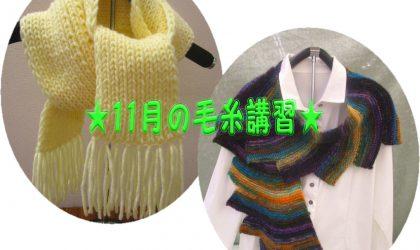 ★11月の毛糸講習★